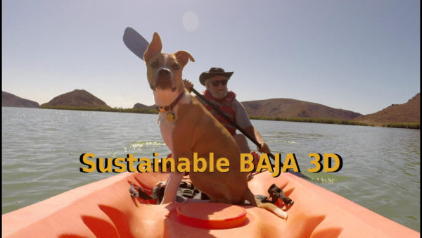 Sustainable Baja 3D