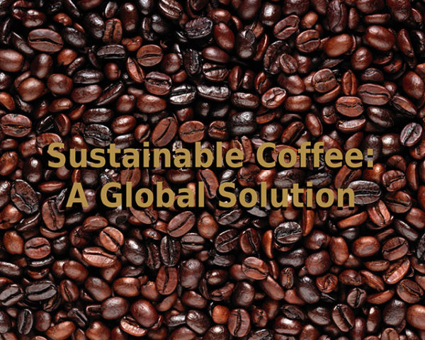 Sustainable Coffee: A Global Solution